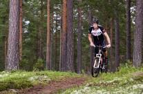 Cykling i skog